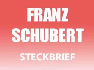 Teaserbild - Franz Schubert Steckbrief
