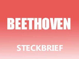 Teaserbild - Ludwig van Beethoven Steckbrief