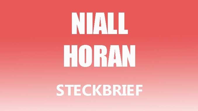 Teaserbild - Niall Horan Steckbrief