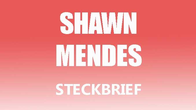 Teaserbild - Shawn Mendes Steckbrief
